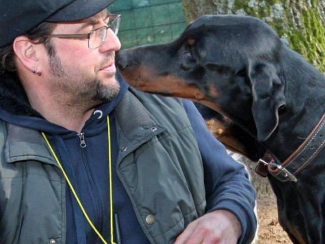 Hoffnung für die Hunde-Ranch